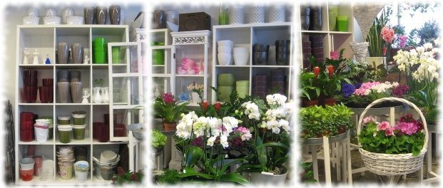 Äänekoskelainen kukka ja hautausalan kauppa